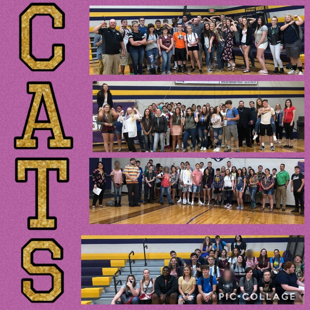 Wildcats Start CATS Families Program