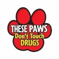 Paws don't Touch Drugs