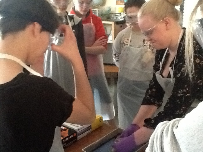 Ms. Maschmeier demonstrating dissection of sheep heart