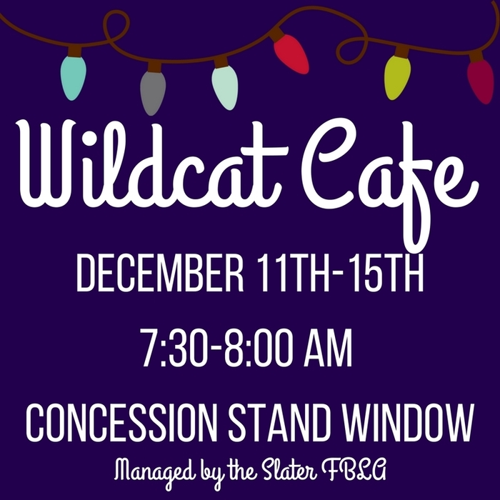 Large_wildcat_cafe